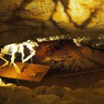 メルボルンから車で行ける世界遺産、ナラコーテ洞窟に行ってきました。